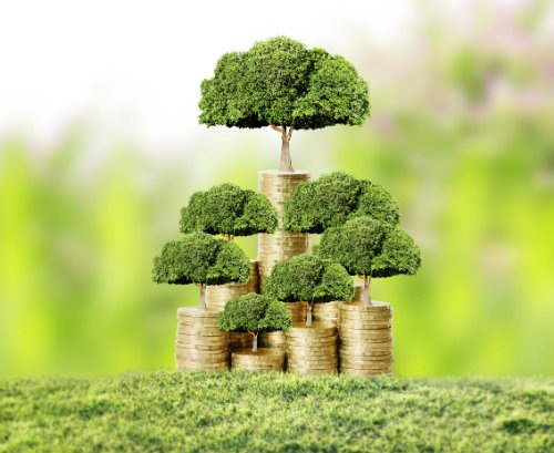 Is Green (Investment) the New Black?
