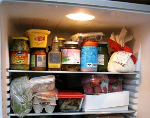 How to Better Use Your Fridge to Save on Food and Electricity